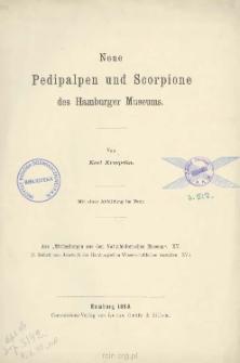 Neue Pedipalpen und Scorpione des Hamburger Museums