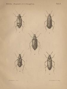Monographie der gattung Strongylium Kirby, Lacordaire und der damit zunächst verwandten Formen