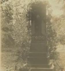 Władysław Nałęcz Dybowski - grób