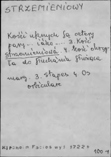 Kartoteka Słownika języka polskiego XVII i 1. połowy XVIII wieku; Strzemieniowy - Suchęniowski