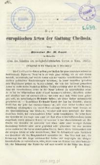 Die europäischen Arten der Gattung Cheilosia