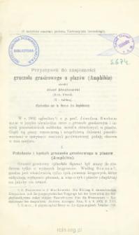 Przyczynek do znajomości gruczołu grasicowego u płazów (Amphibia)