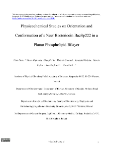 Physicochemical Studies on Orientation and Conformation of a New Bacteriocin BacSp222 in a Planar Phospholipid Bilayer